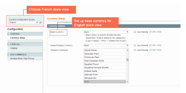 Choose French store view from Current Configuration Scope.