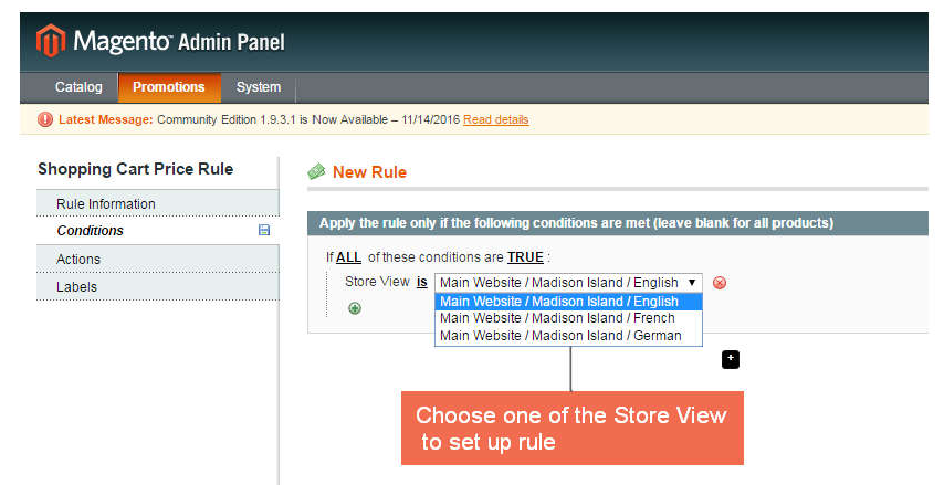 choose which store view to set up the cart rule