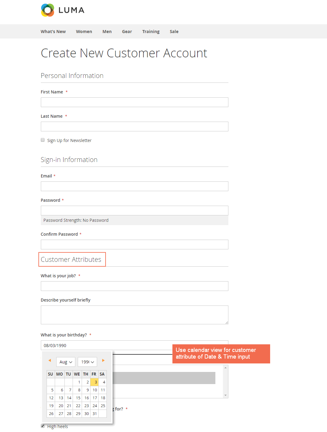 Magento 2 Registration form with additional customer attributes